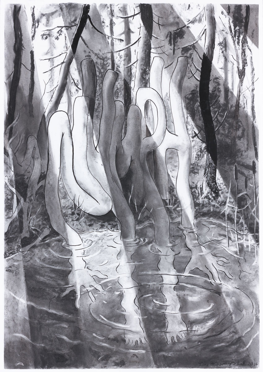Nymph, 2016<br>100x70cm<br>charcoal and pigment on paper