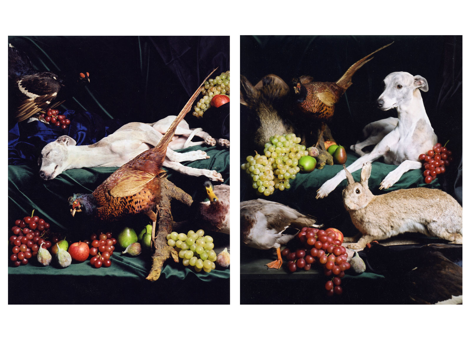 Two Dogs (diptych), 2005<br>Lambda Print<br>each 100x80cm